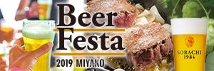 ve_beer_festa